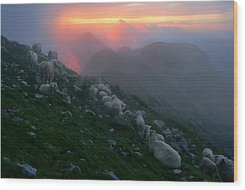 Wood Print featuring the photograph Slovenian Sunset by Graham Hawcroft pixsellpix