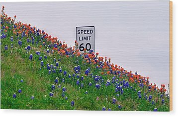Slow Down And Smell The Bluebonnets Wood Print