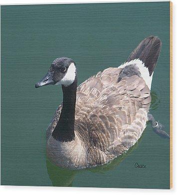Slow Paddle Wood Print by Julie Grace