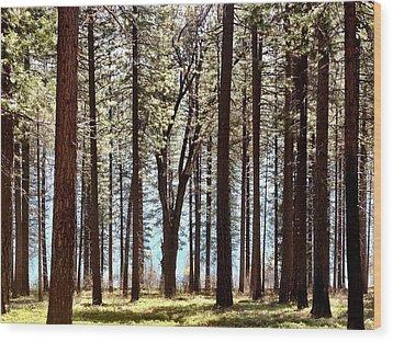 Sly Park Wood Print