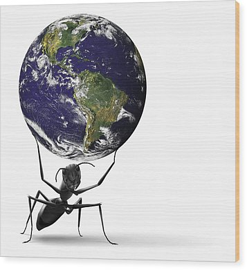 Small Ant Lifting Heavy Blue Earth Wood Print by Dirk Ercken