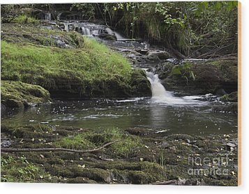 Small Falls On West Beaver Creek Wood Print by Kathy McClure