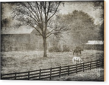 Small Farm In West Virginia Wood Print by Dan Friend