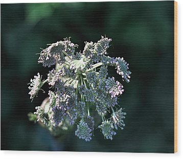 Wood Print featuring the photograph Small Flowers Makes One Big by Leif Sohlman