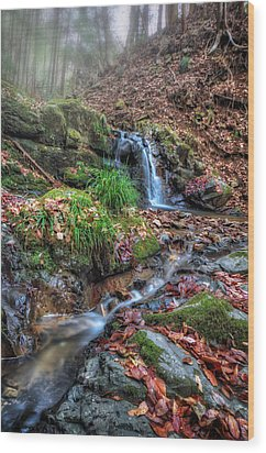 Small Fog Waterfall Wood Print by John Swartz