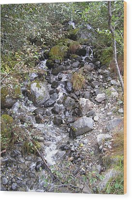 Small Glacial Stream Wood Print