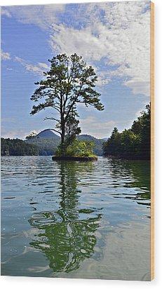 Small Island Wood Print by Susan Leggett