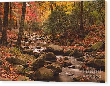 Wood Print featuring the photograph Small Stream by Geraldine DeBoer