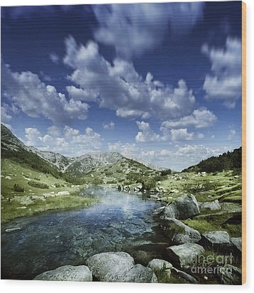 Small Stream In The Mountains Of Pirin Wood Print by Evgeny Kuklev