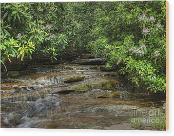 Small Stream In West Virginia With Mountain Laurel Wood Print by Dan Friend