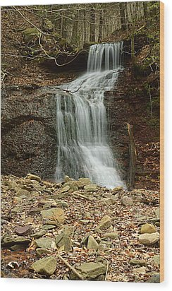 Small Tributary Falls To Heberly Run #1 Wood Print