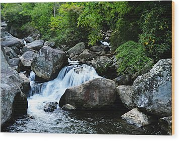 Small Waterfall Wood Print by Adam LeCroy