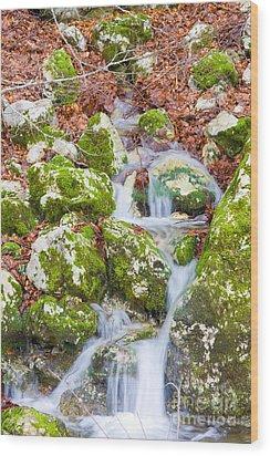 Small Waterfall Wood Print by Gabriela Insuratelu