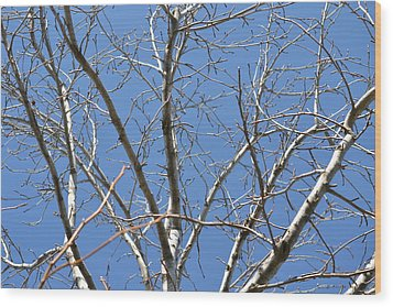 Smallest Branches Wood Print by Kiros Berhane