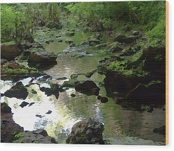 Smallin Creek Wood Print by Julie Grace