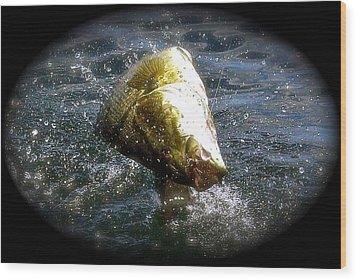 Smallmouth Bass Wood Print by Richard Majeau