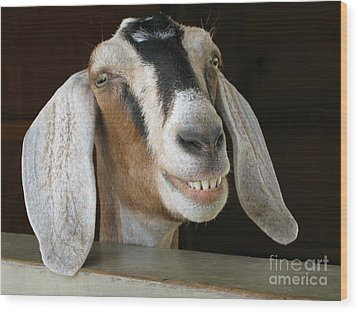 Smile Pretty Wood Print