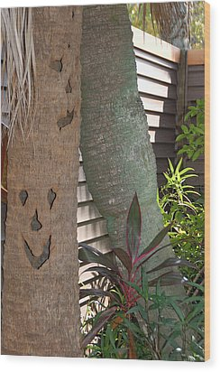 Smiley Tree Wood Print by Aimee L Maher Photography and Art Visit ALMGallerydotcom