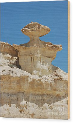 Wood Print featuring the photograph Smiling Stone Man by Linda Prewer