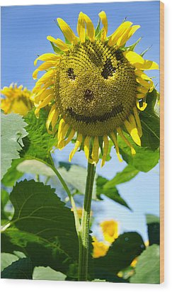Smiling Sunflower Wood Print by Donna Doherty