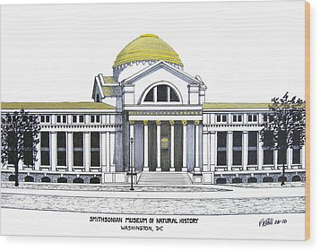 Smithsonian Museum Of Natural History Wood Print by Frederic Kohli