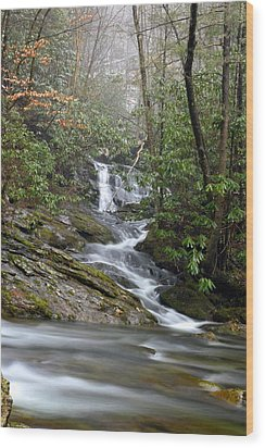 Smoky Mountain Beauty Wood Print