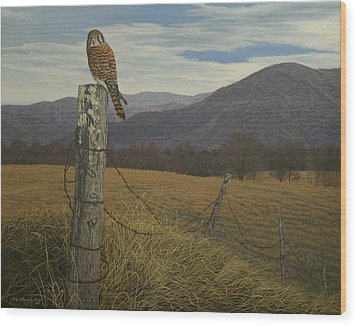 Smoky Mountain Hunter-american Kestrel Wood Print by James Willoughby III