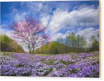 Smoky Mountain Spring Wood Print by Debra and Dave Vanderlaan