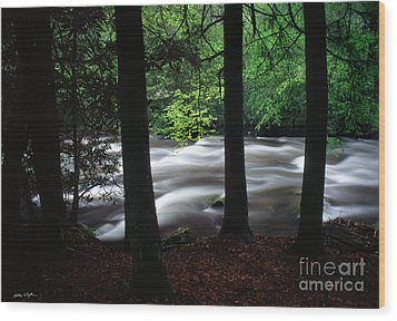 Smoky Mountain Stream #2  2009 Wood Print