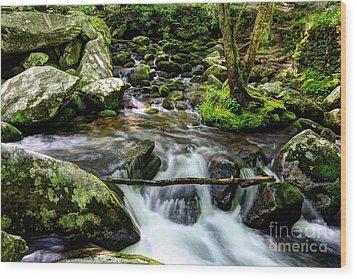 Smoky Mountain Stream 4 Wood Print by Mel Steinhauer