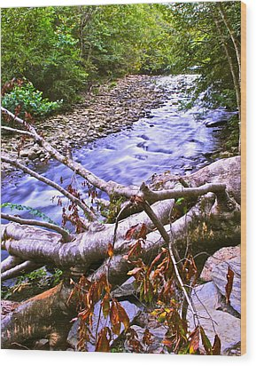 Smoky Mountain Stream Two Wood Print by Frozen in Time Fine Art Photography