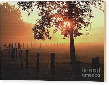 Smoky Mountain Sunrise Wood Print by Douglas Stucky