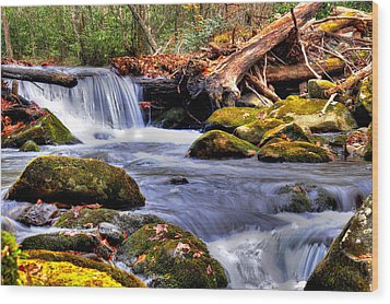 Smoky Mountain Waterfall Wood Print