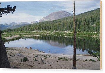 Smooth Lake Reflection Wood Print