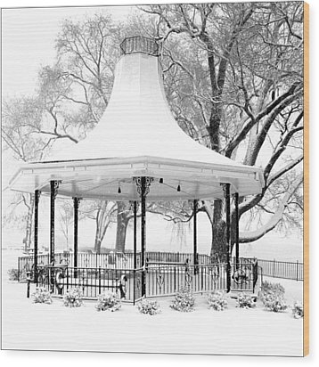 Smothers Park Gazebo Wood Print by Wendell Thompson