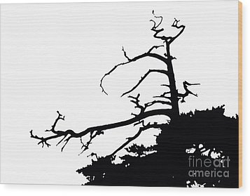 Snag Wood Print by Russell Christie