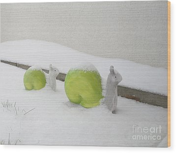 Snails In Snow Wood Print by Art Photography