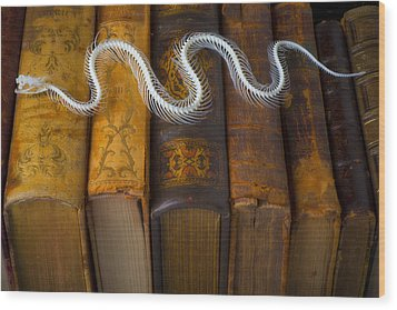 Snake And Antique Books Wood Print by Garry Gay