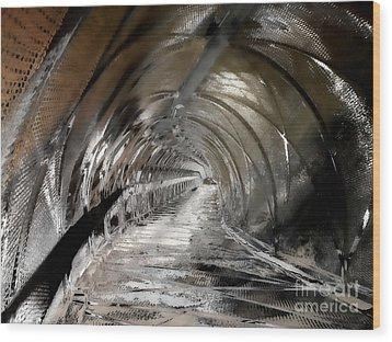 Snake Bridge Wood Print by Barbara D Richards