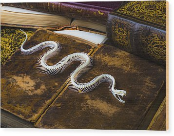 Snake Skeleton And Old Books Wood Print by Garry Gay