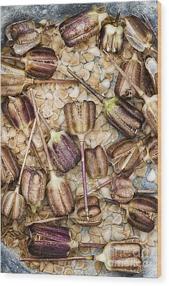 Snakes Head Fritillary Flower Seeds Pattern Wood Print by Tim Gainey