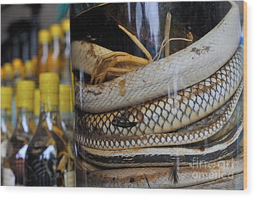 Snakes In Snake-flavoured Alcohol Bottles  Wood Print by Sami Sarkis