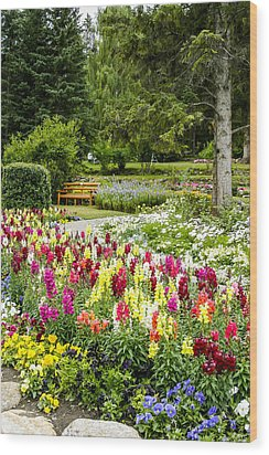 Wood Print featuring the photograph Snapdragon Garden by Margaret Buchanan