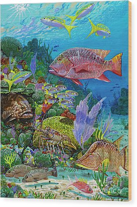 Snapper Reef Re0028 Wood Print by Carey Chen