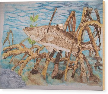 Snook Original Pyrographic Art On Paper By Pigatopia Wood Print by Shannon Ivins