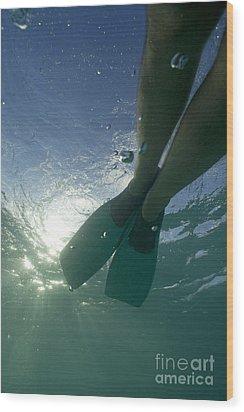 Snorkeller Legs With Flippers Underwater Wood Print by Sami Sarkis