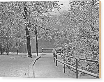 Wood Print featuring the photograph Snow Along The Path by Andy Lawless