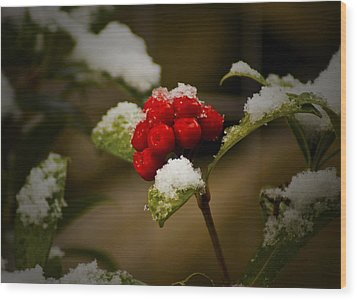 Snow And Berries Wood Print by Ron Roberts