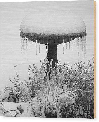 Snow And Ice Served-up Wood Print by MaryJane Armstrong