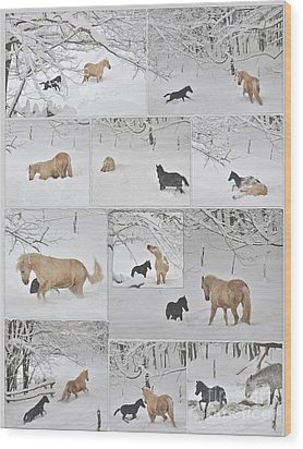 Snow Angels Paso Fino Style Wood Print by Patricia Keller